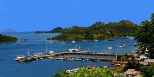 Asita NTT: Hanya Pulau Komodo yang Ditutup, Bukan TNK