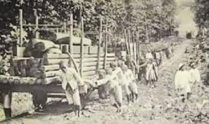 Sejarah Nama Manggarai di Jakarta, dan Kisah Kelam Perbudakan dari Flores